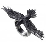 Rings All Wicca Store Magickal Supplies Wiccan Supplies, Wicca Books, Pagan Jewelry, Altar Statues