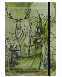 Guardian Embossed Fairy Dragon Journal All Wicca Store Magickal Supplies Wiccan Supplies, Wicca Books, Pagan Jewelry, Altar Statues