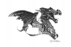 Belt Buckles and More All Wicca Wiccan Altar Supplies, Books, Jewelry, Statues