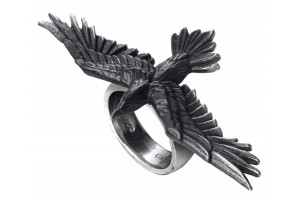 Rings All Wicca Wiccan Altar Supplies, Books, Jewelry, Statues
