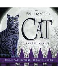 The Enchanted Cat All Wicca Store Magickal Supplies Wiccan Supplies, Wicca Books, Pagan Jewelry, Altar Statues