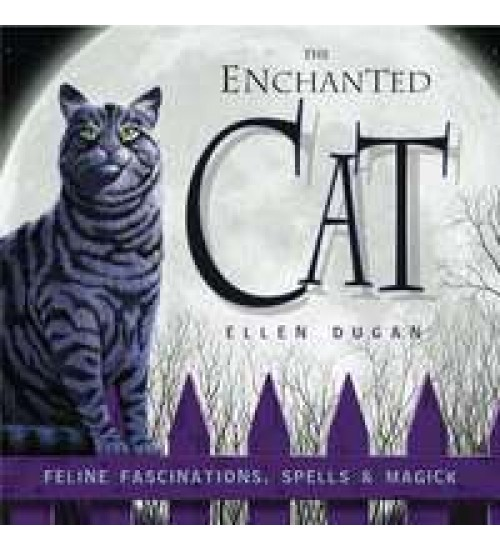The Enchanted Cat at All Wicca Store Magickal Supplies, Wiccan Supplies, Wicca Books, Pagan Jewelry, Altar Statues