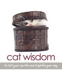 Cat Wisdom Book All Wicca Store Magickal Supplies Wiccan Supplies, Wicca Books, Pagan Jewelry, Altar Statues
