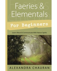 Faeries & Elementals for Beginners All Wicca Store Magickal Supplies Wiccan Supplies, Wicca Books, Pagan Jewelry, Altar Statues