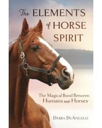 The Elements of Horse Spirit All Wicca Store Magickal Supplies Wiccan Supplies, Wicca Books, Pagan Jewelry, Altar Statues