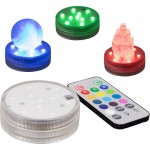 LED Waterproof Light Base with Remote