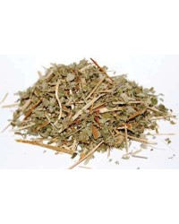 Agrimony Magical Herb - Agrimonia Eupatoria for Protection All Wicca Magickal Supplies Wiccan Supplies, Wicca Books, Pagan Jewelry, Altar Statues