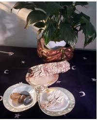 Shell Trio Dish with Silver Rims All Wicca Store Magickal Supplies Wiccan Supplies, Wicca Books, Pagan Jewelry, Altar Statues