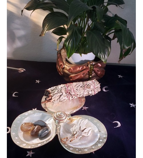 Shell Trio Dish with Silver Rims at All Wicca Store Magickal Supplies, Wiccan Supplies, Wicca Books, Pagan Jewelry, Altar Statues
