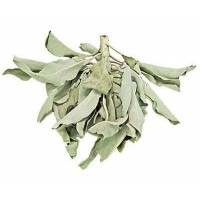 White Sage Leaves Loose Herb