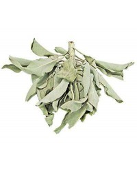 White Sage Leaves Loose Herb All Wicca Store Magickal Supplies Wiccan Supplies, Wicca Books, Pagan Jewelry, Altar Statues