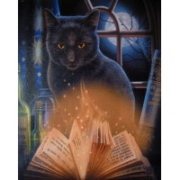 Bewitched Black Cat Canvas Print by Lisa Parker