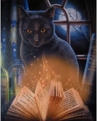 Bewitched Black Cat Canvas Print by Lisa Parker All Wicca Store Magickal Supplies Wiccan Supplies, Wicca Books, Pagan Jewelry, Altar Statues