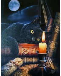 Witching Hour Black Cat Canvas Print by Lisa Parker All Wicca Store Magickal Supplies Wiccan Supplies, Wicca Books, Pagan Jewelry, Altar Statues